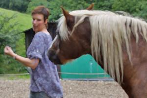 Pferdecoaching: Authentische Führung