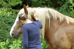 Der Pferdecoachee und sein Coach